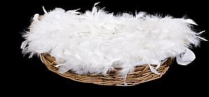 bulk goose down, basket of goose down, basket of bulk goose down